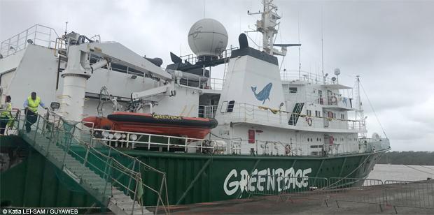 Nouvelle mission de Greenpeace en Guyane