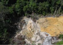 Exploitations d'or illégales au sein du Parc Amazonien de Guyane : secteur par secteur, l'ampleur du désastre  !