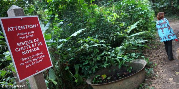 Le sentier de l'Habitation Mondélice : échappée belle en temps de confinement