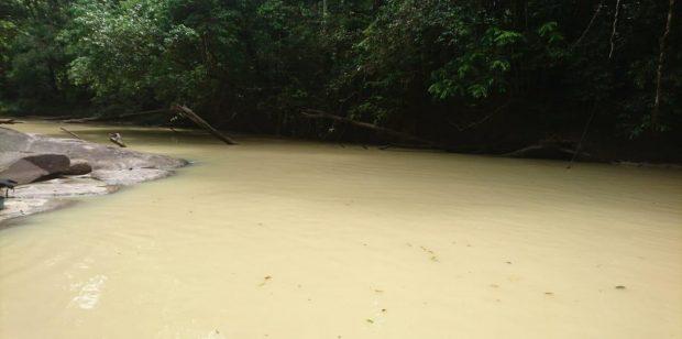 Une plainte pour atteinte à l'environnement et à la santé déposée à Cacao au regard de la turbidité de la crique Bagot en proie à l'activité aurifère illicite